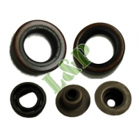 Robin EY20 Oil Seal Kit